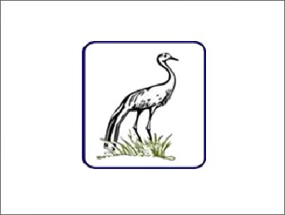 Cranefeeds